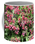 Pulmonaria Named Raspberry Splash Coffee Mug