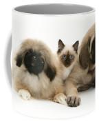 Puppies And Kitten Coffee Mug by Jane Burton