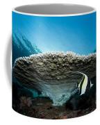 Reef Scene With Corals And Fish Coffee Mug