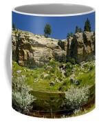Reflecting Cliffs Coffee Mug