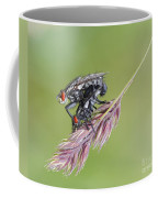 Reproduction - At The Height Of Bliss Coffee Mug