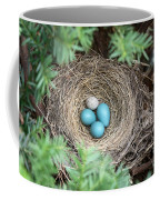 Robins Nest And Cowbird Egg Coffee Mug