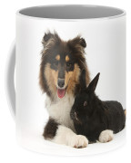 Rough Collie With Black Rabbit Coffee Mug