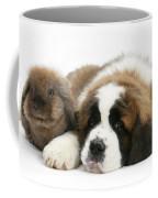 Saint Bernard Puppy With Rabbit Coffee Mug