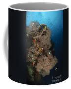 Sea Fans, Fiji Coffee Mug