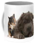 Shar Pei Puppy And Tortoiseshell Kitten Coffee Mug