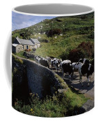 Slea Head, Dingle Peninsula, Co Kerry Coffee Mug
