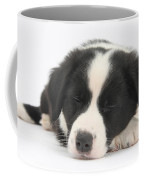 Sleepy Puppy Coffee Mug