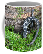 Slimy Salamander Coffee Mug