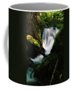 Small Waterfall Coffee Mug