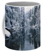 Snow-covered Trees Reflected Coffee Mug