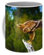 Steppe Eagle Coffee Mug