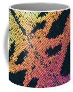 Sunset Moth Urania Ripheus Coffee Mug