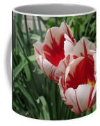 Triumph Tulip Named Carnaval De Rio Coffee Mug