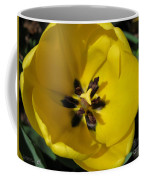 Tulip Named Big Smile Coffee Mug