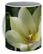 Tulip Named Perles De Printemp Coffee Mug
