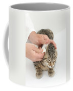 Vet And Kitten Coffee Mug