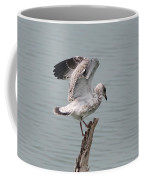 Wing Test Coffee Mug