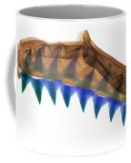 X-ray Of Shark Jaws Coffee Mug