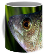 Yellow Perch Perca Flavescens Coffee Mug