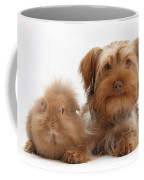 Puppy And Rabbit Coffee Mug
