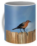 27- Grackle Coffee Mug