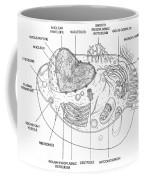 Animal Cell Diagram Coffee Mug