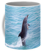 Atlantic Bottlenose Dolphin Coffee Mug