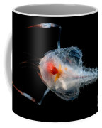 Blind Lobster Coffee Mug