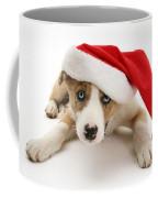 Border Collie Puppy Coffee Mug by Jane Burton