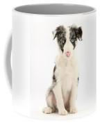 Border Collie Puppy Coffee Mug