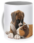 Boxer Puppy And Guinea Pig Coffee Mug by Mark Taylor