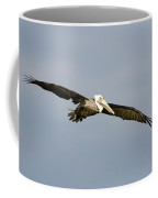 Brown Pelican Pelecanus Occidentalis Coffee Mug
