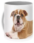 Bulldog Pup Coffee Mug
