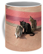 3 Cats Looking Pensive Coffee Mug