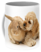 Cocker Spaniel And Rabbit Coffee Mug