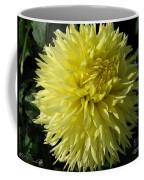 Dahlia Named Colwood Ann Coffee Mug