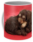 Doxie-doodle Puppies Coffee Mug