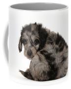 Doxie-doodle Puppy Coffee Mug