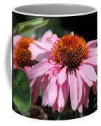 Echinacea Purpurea Or Purple Coneflower Coffee Mug