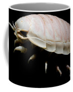 Giant Marine Isopod Coffee Mug