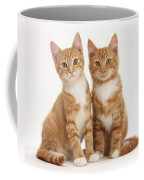 Ginger Kittens Coffee Mug