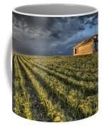 Newly Planted Crop Coffee Mug