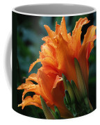 Orange Daylily Coffee Mug