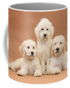 Puppies Coffee Mug