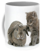 Rabbit And Kitten Coffee Mug