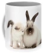 Ragdoll-cross Kitten And Young Coffee Mug