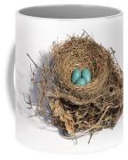 Robins Nest With Eggs Coffee Mug