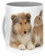 Rough Collie Pup With Rabbit Coffee Mug