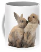 Sandy Rabbits Sharing Grass Coffee Mug